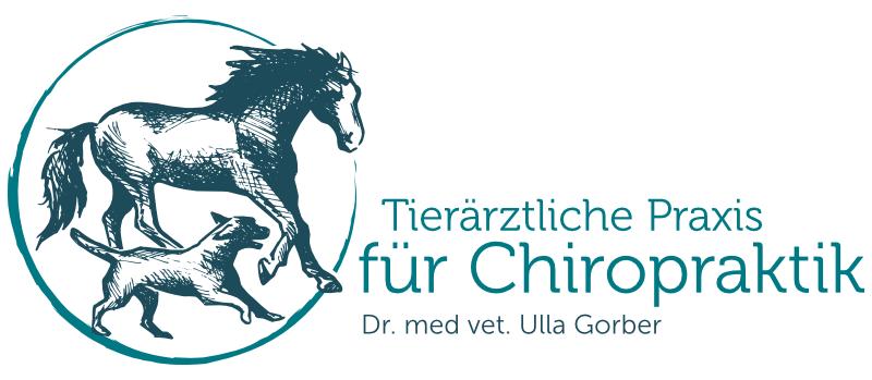 Tierarzt Logo Pferde