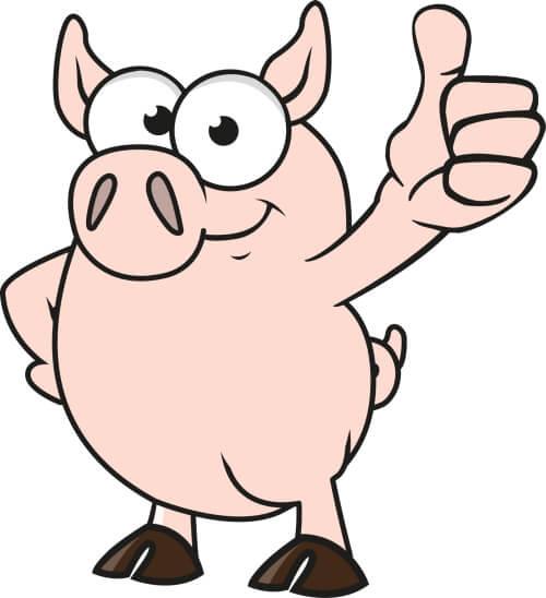 Maskottchen-Design Schwein