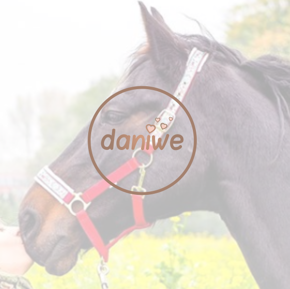 daniwe logo youtube