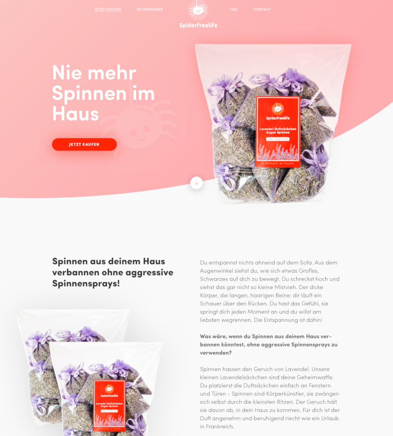 Webdesign Kosten Spiderfreelife 258494