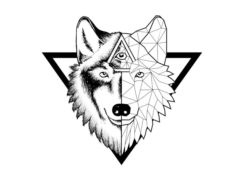 Wolf Logo Wolfskopf Illustration