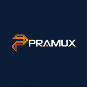 Logo-Software-Pramux-Softwareunternehmen