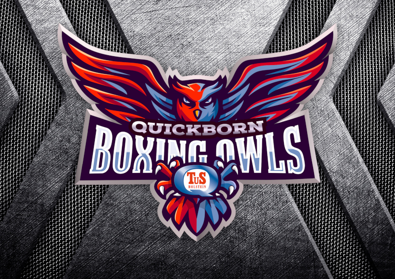 Quick-Born-Boxing-Owls-Logo-Design-Kreativitaet