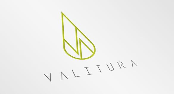 CBD Logo, Valitura