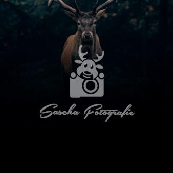 Sascha-Fotografie-Kamera-Logos