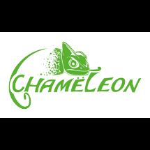 Band Logo-Design für 'Chameleon'